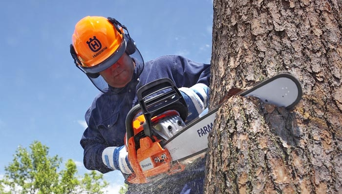 Chainsaw Equipment & Accessories